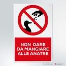 Cartello plexiglass ( cm 13 x 20 ) su parete con distanziatori: Non dare da mangiare alle anatre